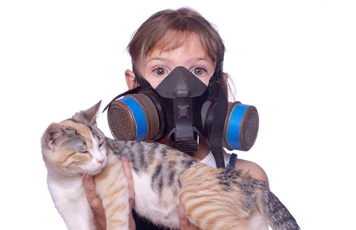 بوی بد گربه