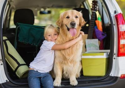سفر با سگ